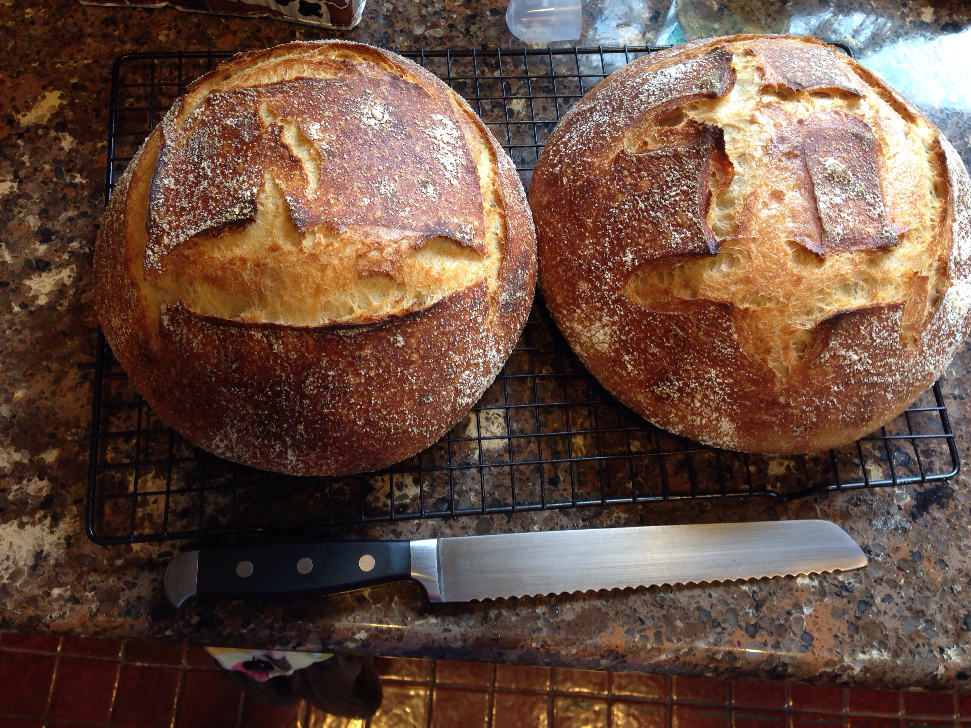 how to make starter culture for sour dow bread